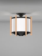 Winston Series Ceiling Mount Church Light Fixture